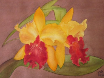 Yvette Vas yellow and red orchids